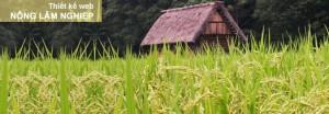 Thiết kế web nông lâm nghiệp